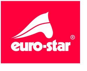 Euro-Star_logo_mitRand